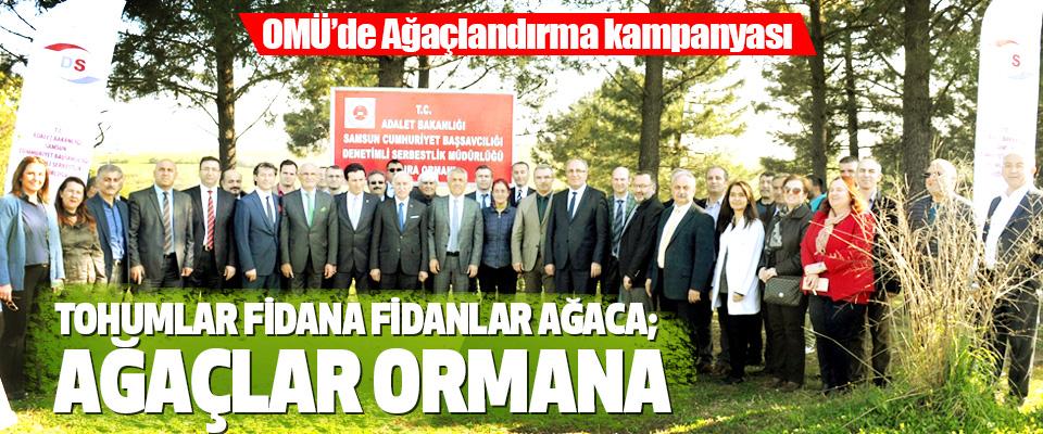 OMÜ'de Ağaçlandırma kampanyası