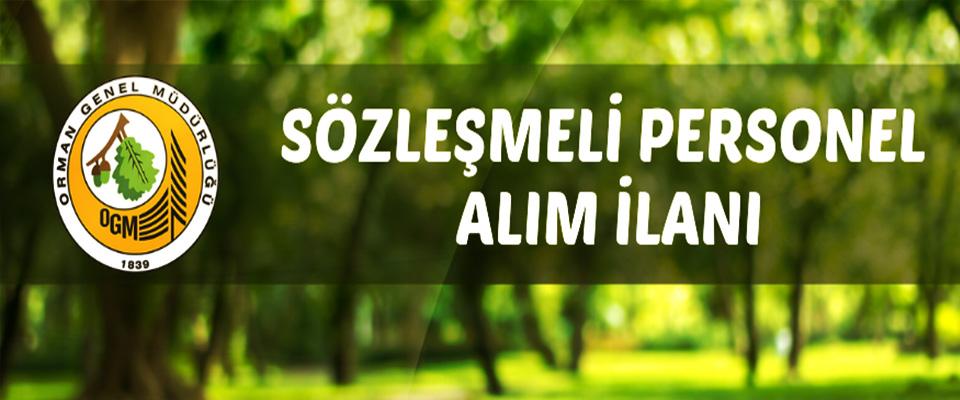 Orman Genel Müdürlüğü Sözleşmeli Personel Alacak!