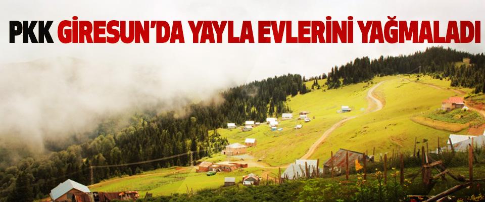 PKK Giresun'da Yayla Evlerini Yağmaladı