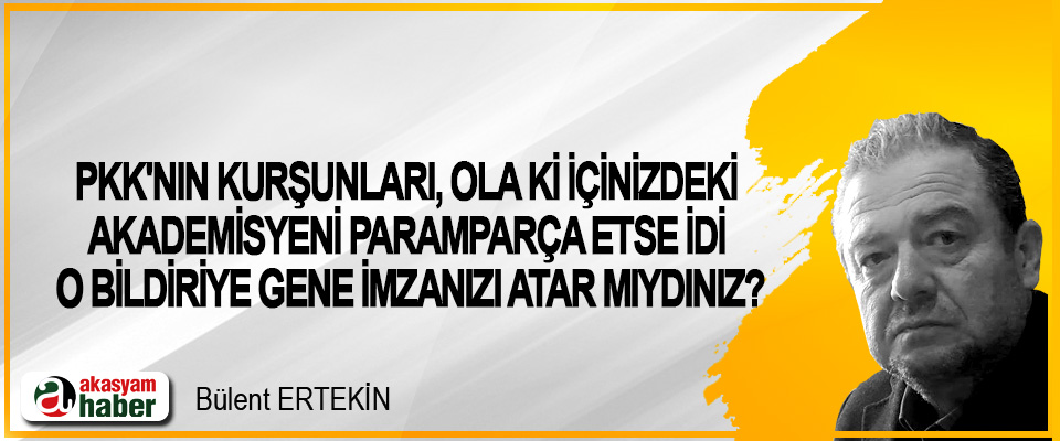PKK'nın Kurşunları, Ola Ki İçinizdeki Akademisyeni Paramparça Etse İdi O Bildiriye Gene İmzanızı Atar Mıydınız?