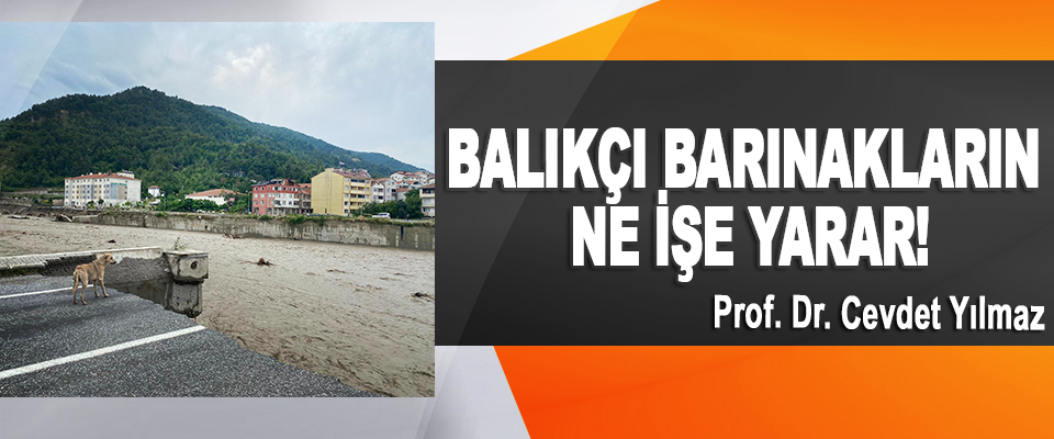 Prof. Dr. Cevdet Yılmaz :Balıkçı Barınakların Ne İşe Yarar!