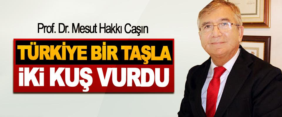 Prof. Dr. Mesut Hakkı Caşın: Türkiye Bir Taşla İki Kuş Vurdu