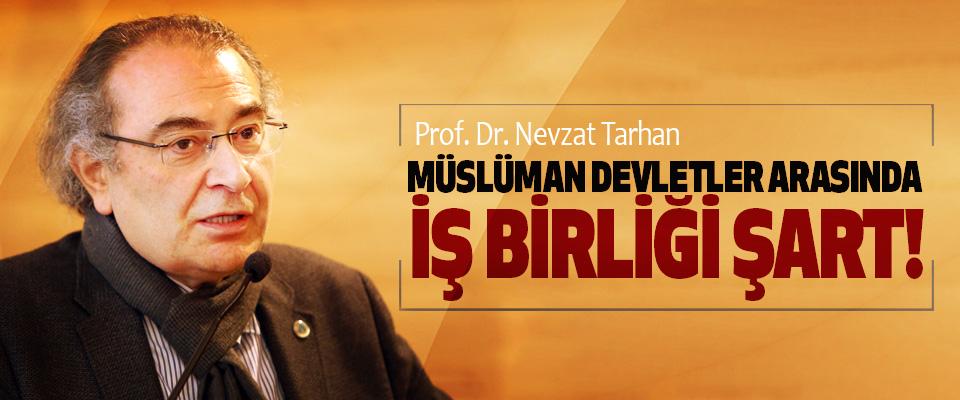 Prof. Dr. Nevzat Tarhan: Müslüman devletler arasında iş birliği şart!