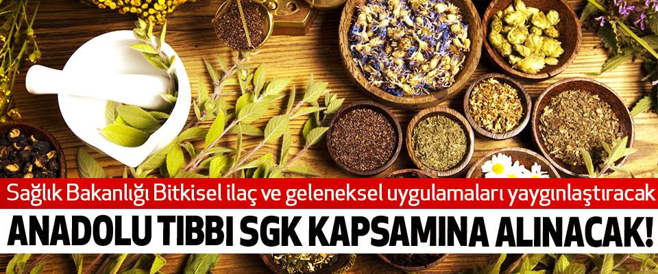 Sağlık Bakanlığı Bitkisel ilaç ve geleneksel uygulamaları yaygınlaştıracak