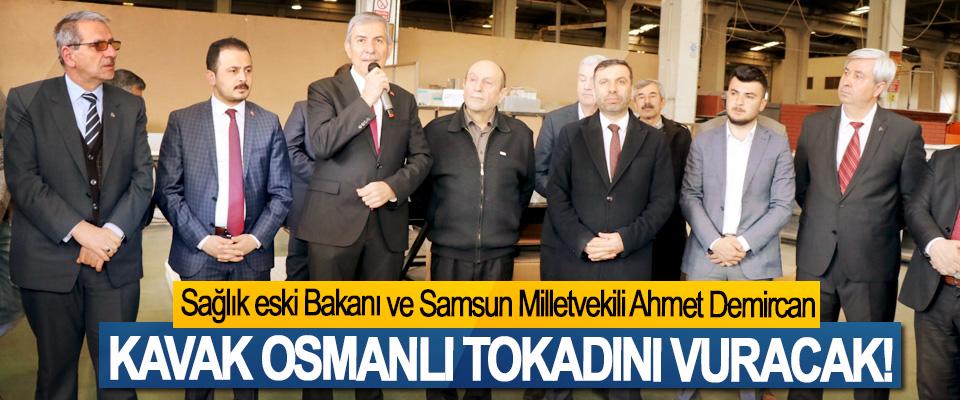 Sağlık eski Bakanı ve Samsun Milletvekili Ahmet Demircan; Kavak Osmanlı tokadını vuracak!