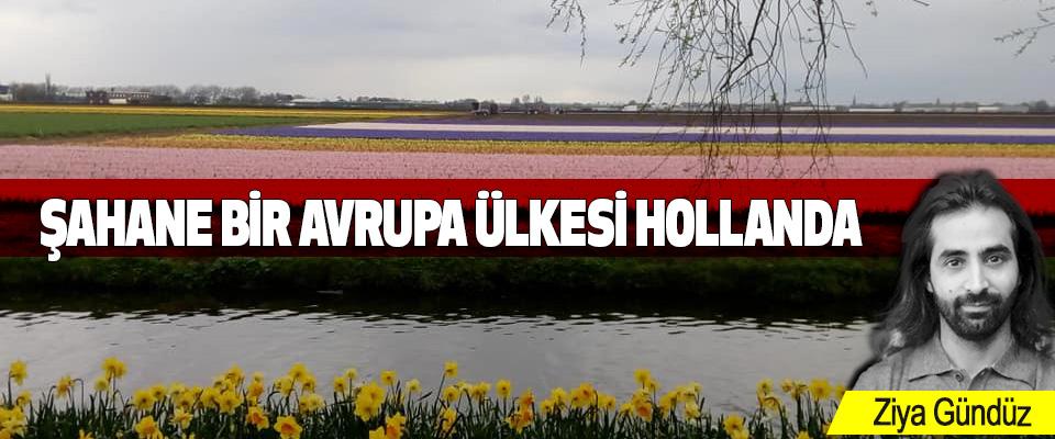 Şahane Bir Avrupa Ülkesi Hollanda
