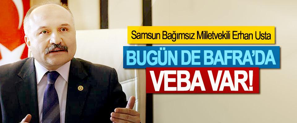 Samsun Bağımsız Milletvekili Erhan Usta: Bugün de Bafra'da veba var!