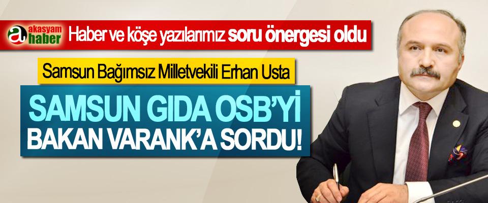 Samsun Bağımsız Milletvekili Erhan Usta Samsun Gıda OSB'yi Bakan Varank'a sordu!