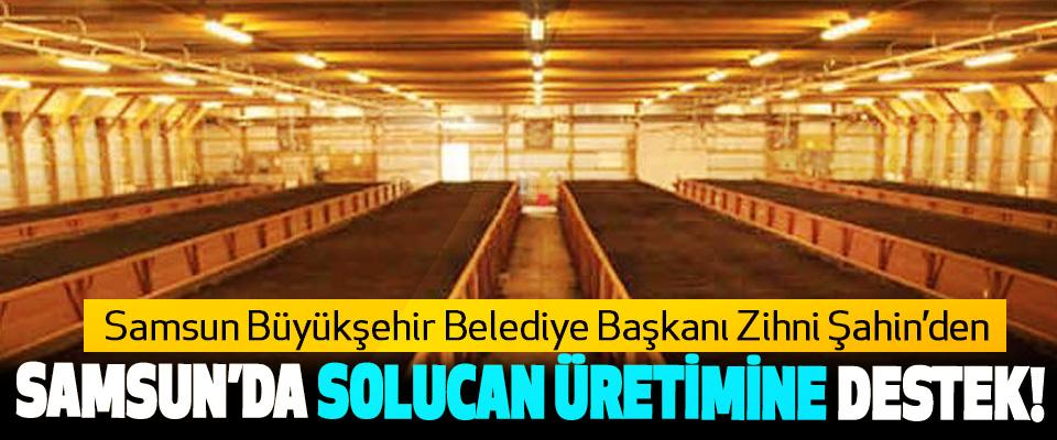 Samsun Büyükşehir Belediye Başkanı Zihni Şahin'den Samsun'da solucan üretimine destek!