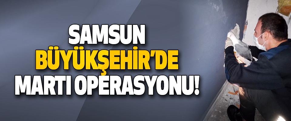 Samsun Büyükşehir'de Martı Operasyonu!