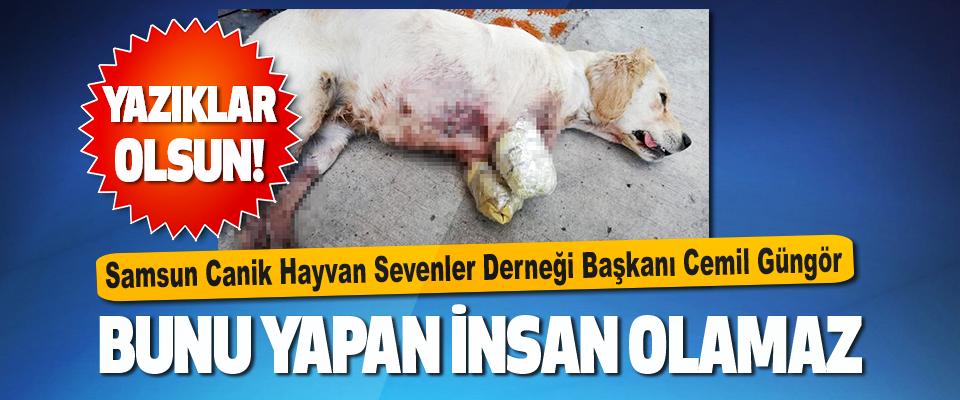 Samsun Canik Hayvan Sevenler Derneği Başkanı Cemil Güngör
