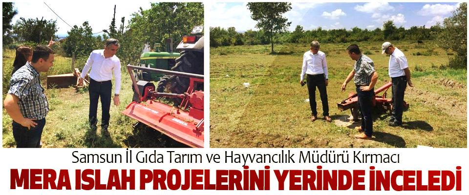 Samsun İl Gıda Tarım ve Hayvancılık Müdürü Kırmacı Mera Islah Projelerini Yerinde İnceledi
