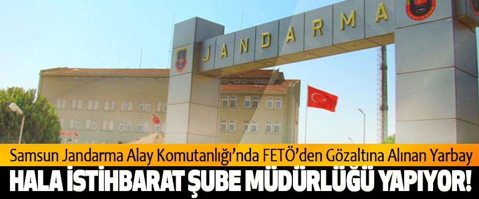 Samsun Jandarma Alay Komutanlığı'nda FETÖ'den Gözaltına Alınan Yarbay Hala istihbarat şube müdürlüğü yapıyor!