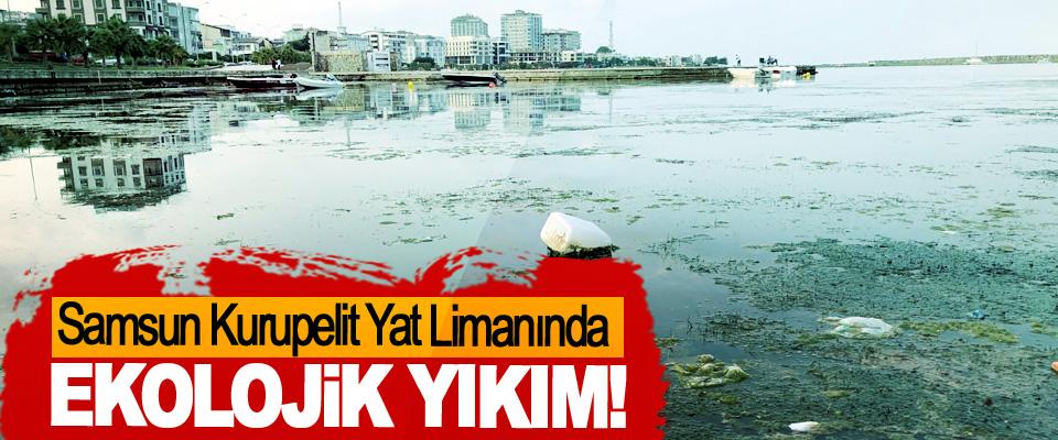 Samsun Kurupelit Yat Limanında Ekolojik Yıkım!
