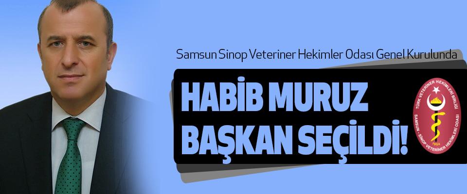 Samsun Sinop Veteriner Hekimler Odası Genel Kurulunda Habib Muruz Başkan Seçildi!