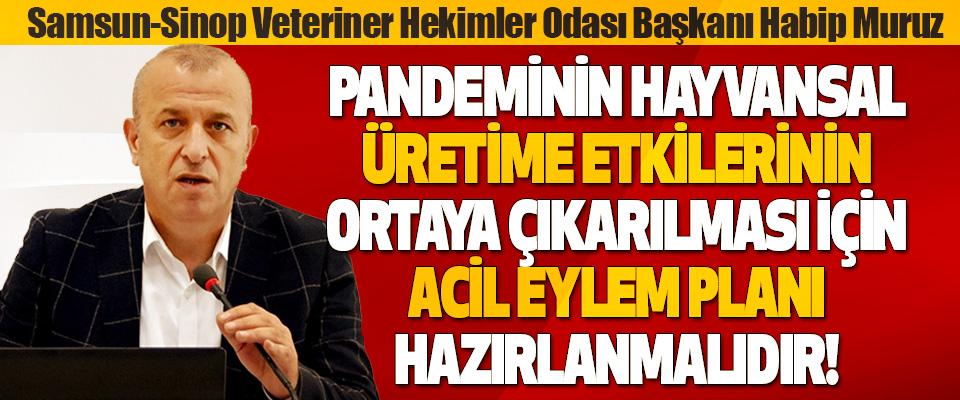Samsun-Sinop Veteriner Hekimler Odası Başkanı Habip Muruz Acil Eylem Planı Hazırlanmalıdır!