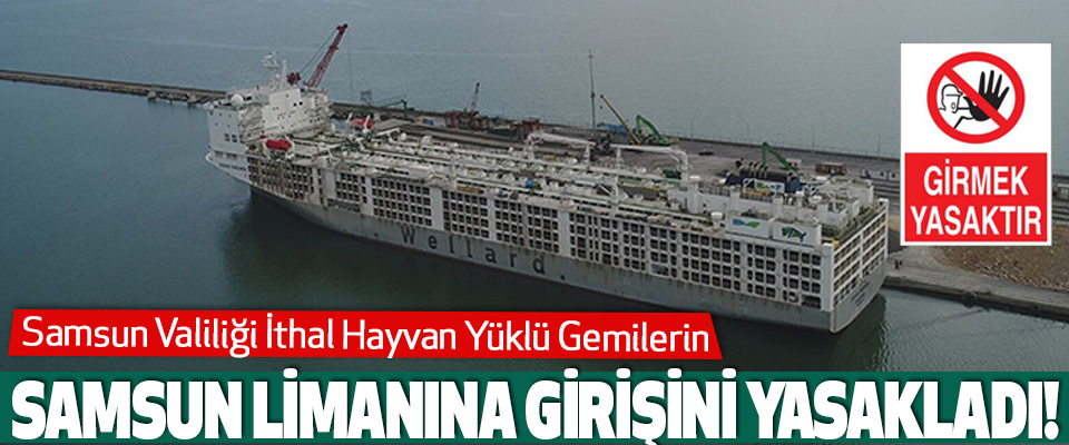 Samsun Valiliği İthal Hayvan Yüklü Gemilerin Samsun Limanına Girişini Yasakladı!