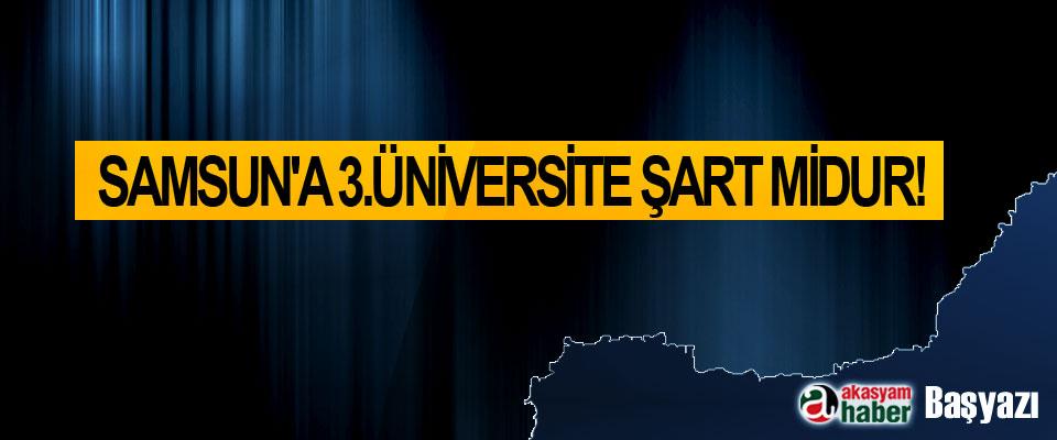 Samsun'a 3.üniversite şart midur!