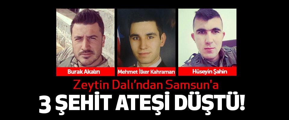 Samsun'a Afrin'den 3 şehit haberi!