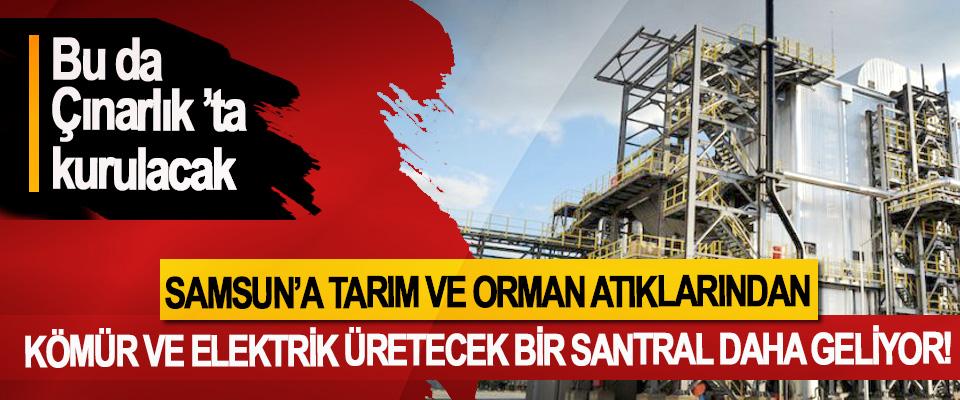 Samsun'a Tarım Ve Orman Atıklarından Kömür Ve Elektrik Üretecek Bir Santral Daha Geliyor!