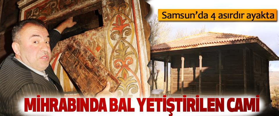 Samsun'da 4 asırdır ayakta olan ve Mihrabında Bal Yetiştirilen Cami