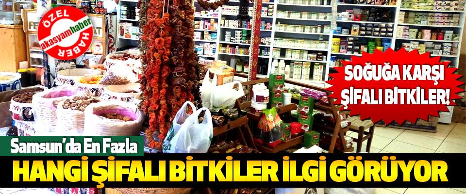Samsun'da En Fazla Hangi Şifalı Bitkiler İlgi Görüyor