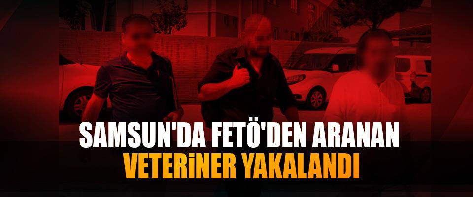 Samsun'da FETÖ'den Aranan Veteriner Yakalandı