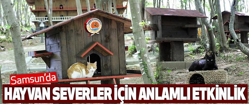 Samsun'da Hayvan Severler İçin Anlamlı Etkinlik