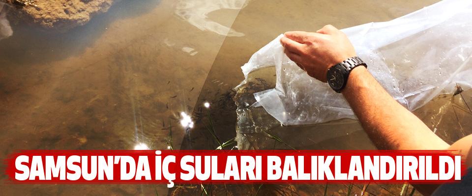 Samsun'da İç Suları Balıklandırıldı