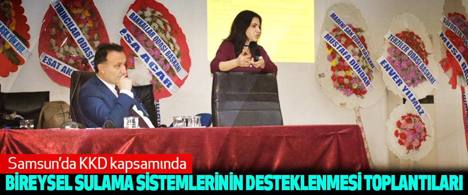 Samsun'da KKD kapsamında Bireysel Sulama Sistemlerinin Desteklenmesi Toplantıları