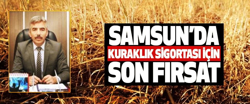 Samsun'da Kuraklık Sigortası İçin Son Fırsat