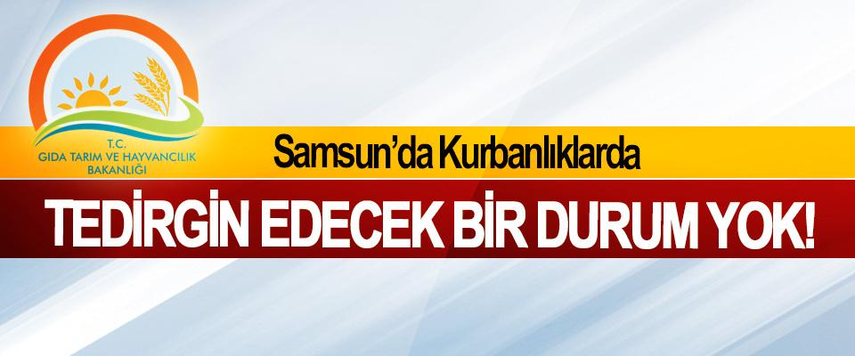 Samsun'da Kurbanlıklarda Tedirgin Edecek Bir Durum Yok!