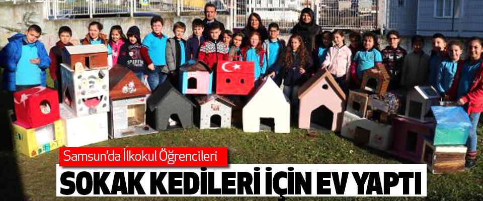 Samsun'da Öğrenciler Sokak Kedileri İçin Ev Yaptı