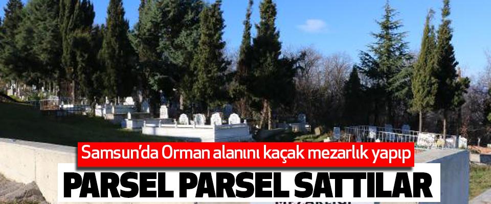 Samsun'da Orman alanını kaçak mezarlık yapıp Parsel Parsel Sattılar