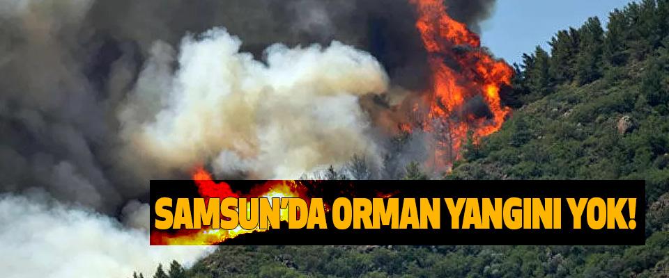 Samsun'da orman yangını yok!