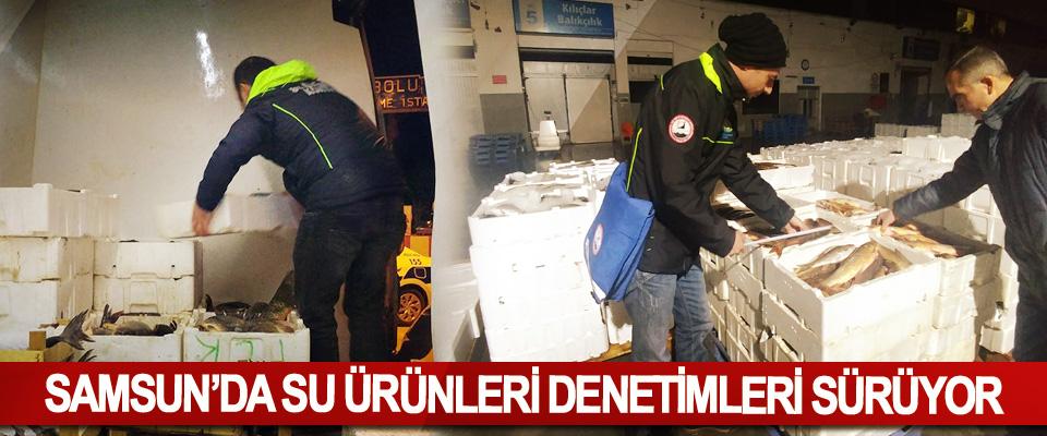 Samsun'da Su Ürünleri Denetimleri Sürüyor