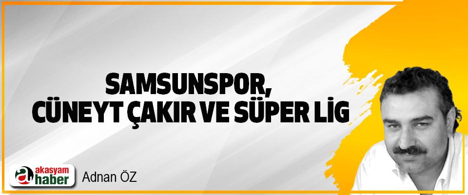 Samsunspor, Cüneyt Çakır Ve Süper Lig