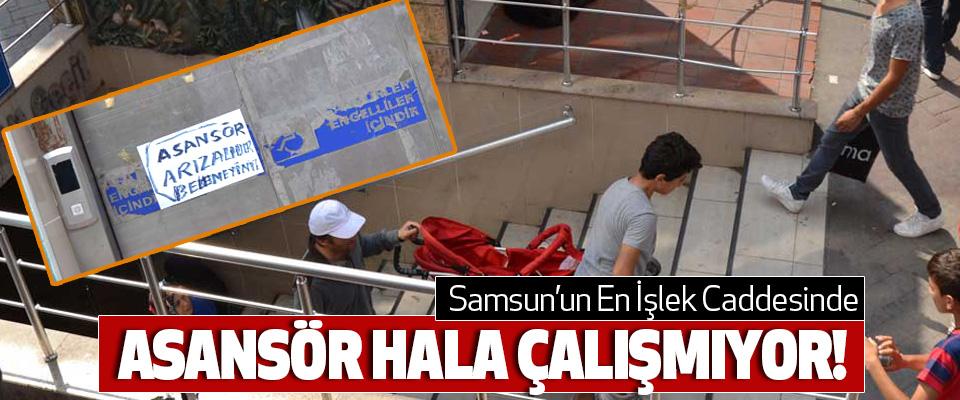 Samsun'un En İşlek Caddesinde Asansör Hala Çalışmıyor!