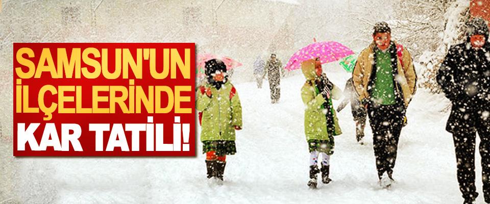Samsun'un ilçelerinde kar tatili!
