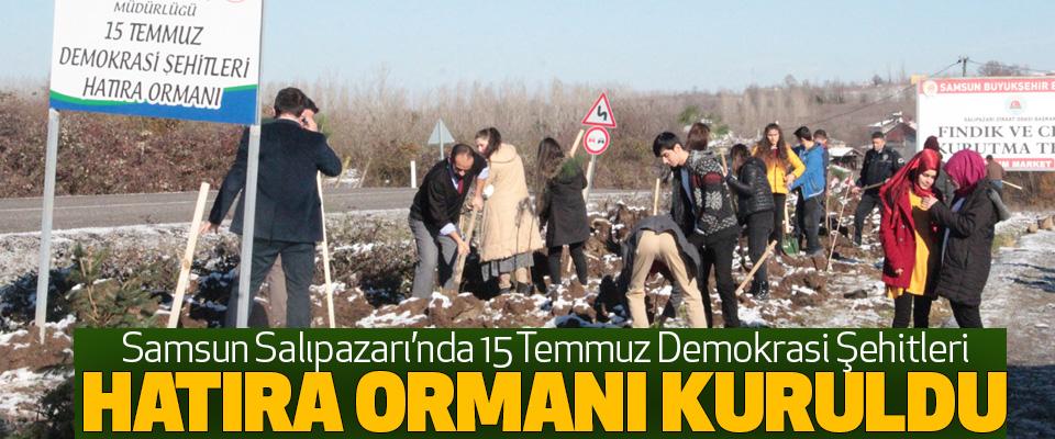 Samsun'un Salıpazarı'nda15 Temmuz Demokrasi Şehitleri Hatıra Ormanı Kuruldu