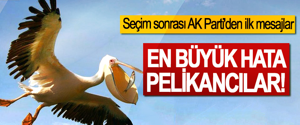 Seçim sonrası AK Parti'den ilk mesajlar