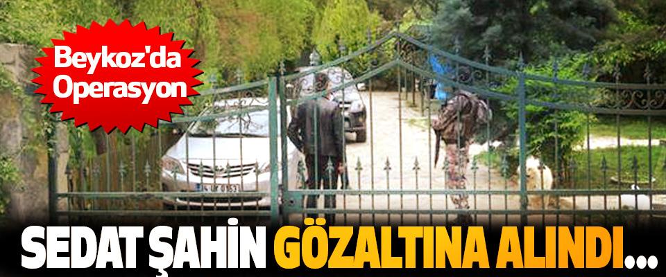 Sedat şahin gözaltına alındı...