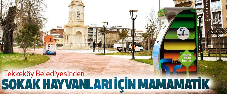 Tekkeköy Belediyesinden Sokak Hayvanları İçin Mamamatik
