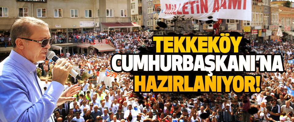 Tekkeköy Cumhurbaşkanı'na hazırlanıyor!