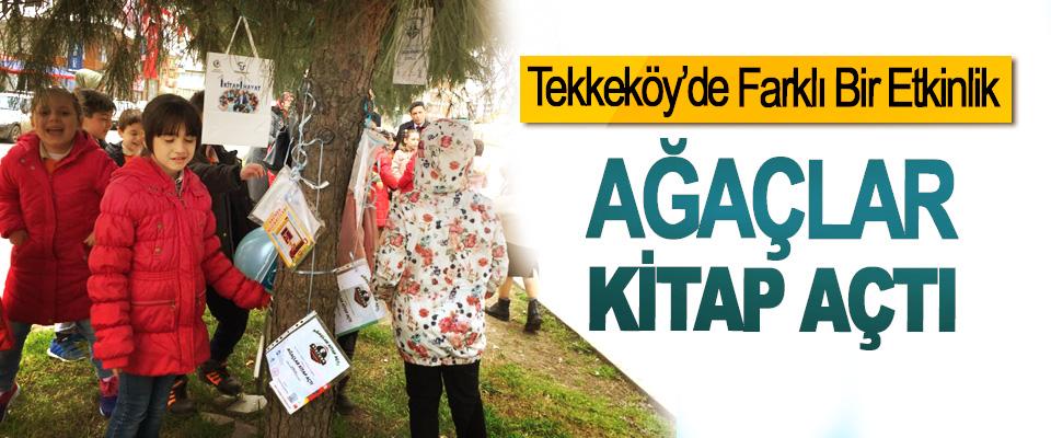 Tekkeköy'de Ağaçlar Kitap Açtı