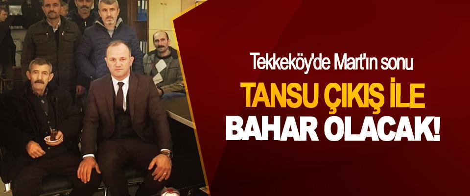 Tekkeköy'de Mart'ın sonu Tansu Çıkış İle Bahar Olacak!