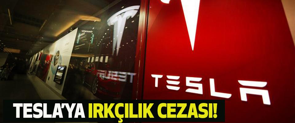 Tesla'ya ırkçılık cezası!