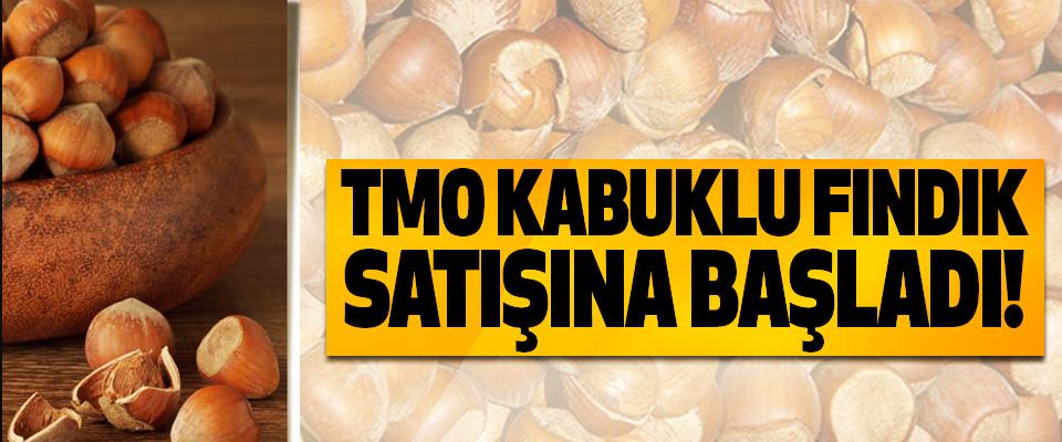 TMO Kabuklu Fındık Satışına Başladı!