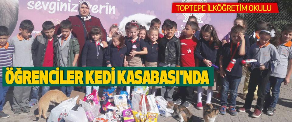 Toptepe İlköğretim Okulu Öğrenciler Kedi Kasabası'nda