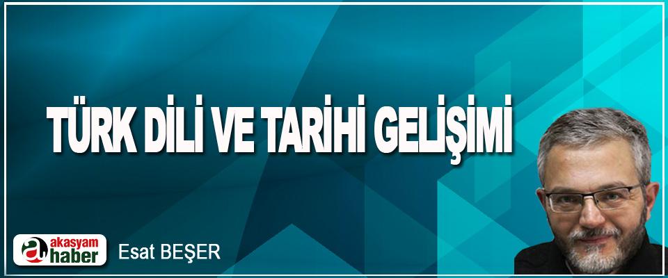 Türk Dili Ve Tarihi Gelişimi
